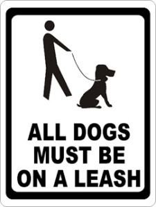 Dogs-Must-Be-On-Leash (1)